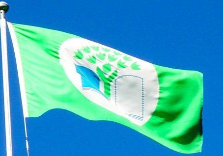 Vihreä-lippu